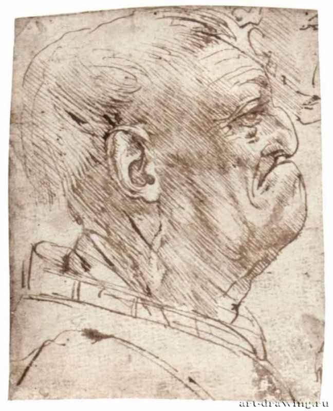 Леонардо да Винчи: Мужская карикатура ...: artforgift.ru/news/karikatura-v-izobrazitelnom-iskusstve